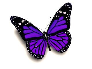 Fototapeta 3D purple butterfly