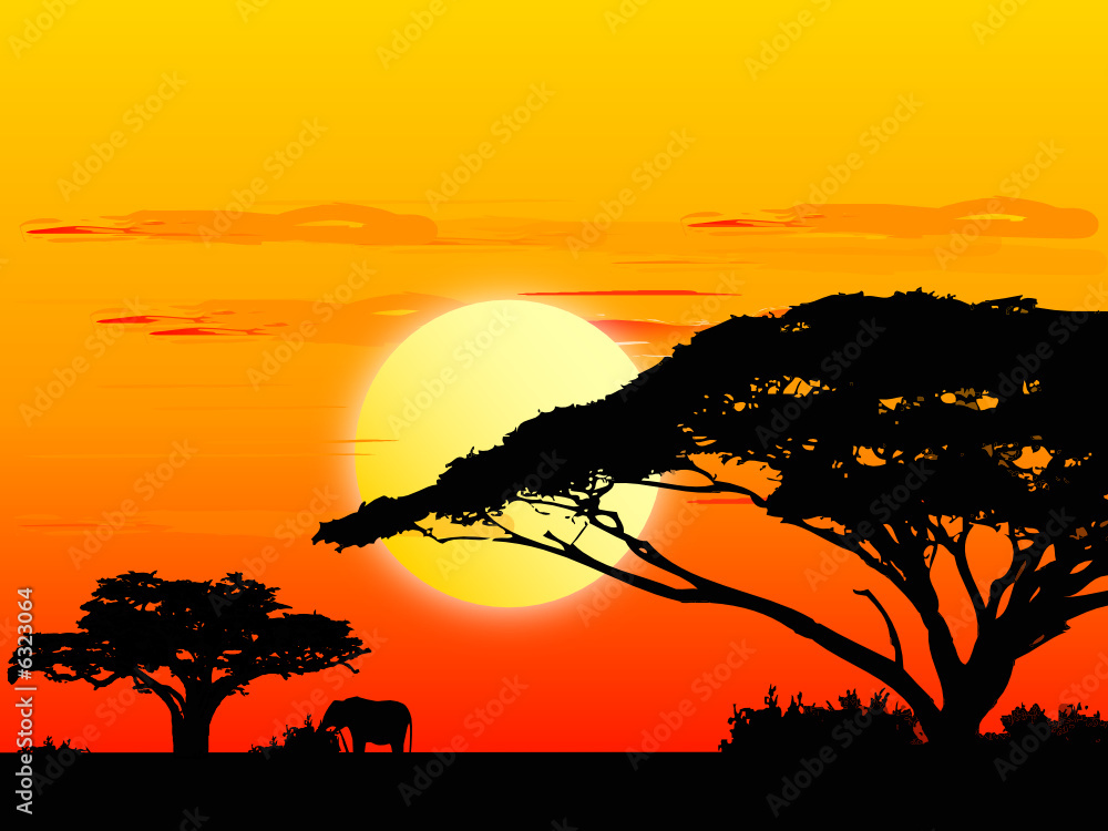 Fototapeta Africa sundown