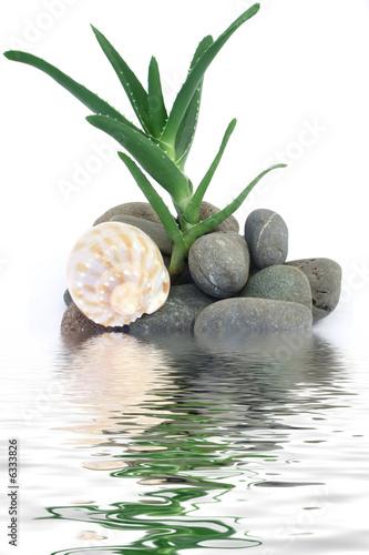 Akustikstoff - aloe vera
