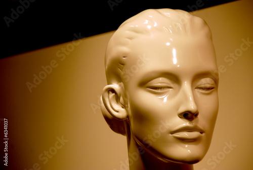 Fotografia, Obraz  plastic face