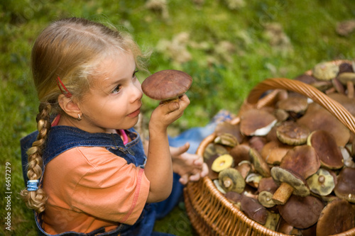 obraz lub plakat ein kleines mädchen mit einem korb voller pilze