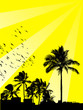 Leinwandbild Motiv sommer und palmas