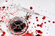 Human Blood, Seringue, Spider