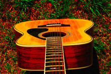 12 String Acoustic Guitar Top ...