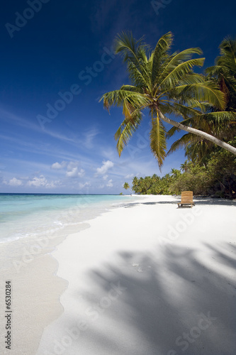 Foto-Schiebegardine Komplettsystem - Beach chair under palm tree, Maldives (von Henrik Winther Ander)