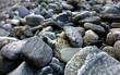Pedras de rio