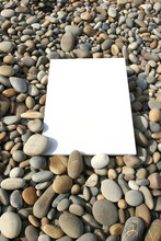 White Card Isolated At The Beach