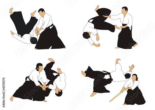 Aikido Wallpaper Mural