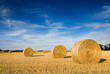 canvas print picture - Straw bales