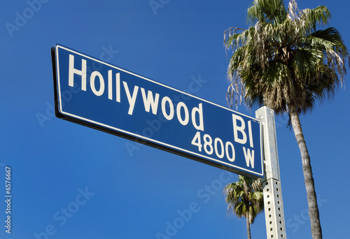 Photo  Hollywood Blvd Street Sign with Palms