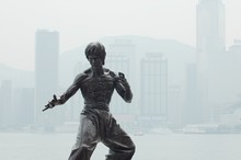 Kung Fu Idol