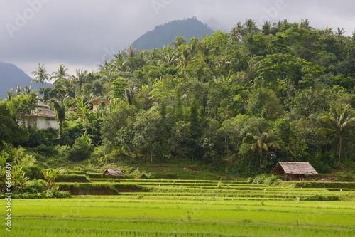 Photo  Lombok 60