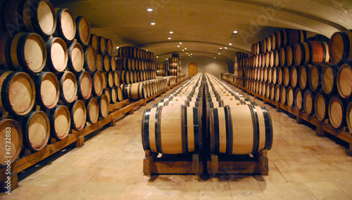 Fotografie, Tablou Wine cellar