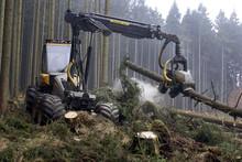 Holzvollernter, Harvester, Wal...