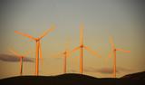 Farma wiatraków – podmuch ekologicznego wiatru