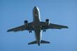 Landing in Blue Sky.
