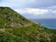 Oceanside Road Leading Over A Lush Hill