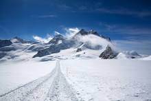Landscape In Swizz Alps