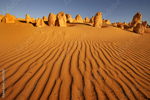 Photo Stands Australia Pinnacles desert in Western Australia