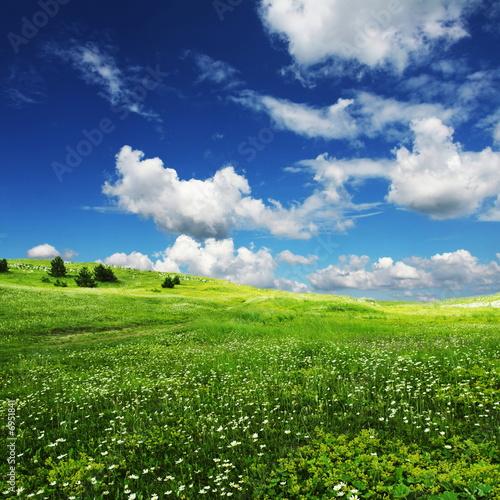 piekna-zielona-polana