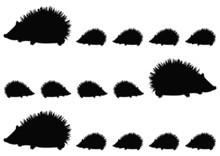Hedgehog Family Pattern