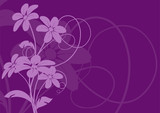 vecteur série - bouquet de fleurs sur fond violet