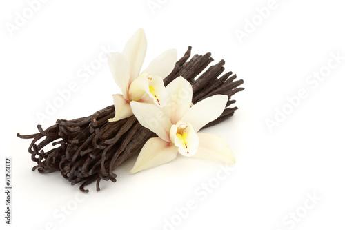 Fotografía  vanilla flowered
