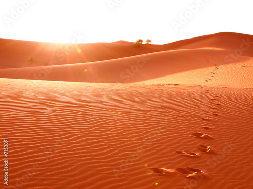 Poster de jardin Rouge traffic Step in desert sand