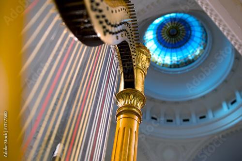 Fotografia Harp strings close up