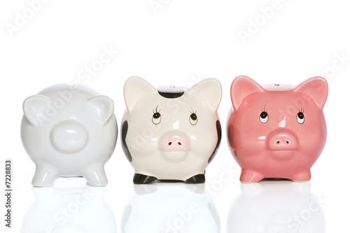 Slika na platnu piggybank family