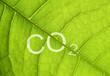 canvas print picture - CO2 Emission