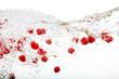 canvas print picture - Raspberry Splash