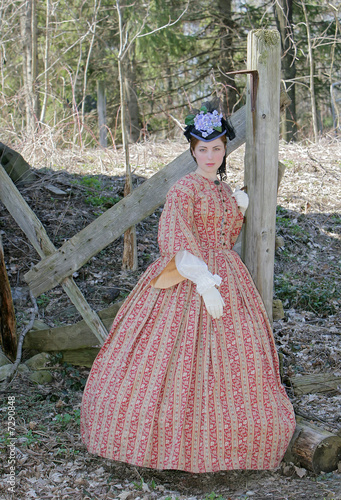 Fotografie, Tablou  civil war era woman