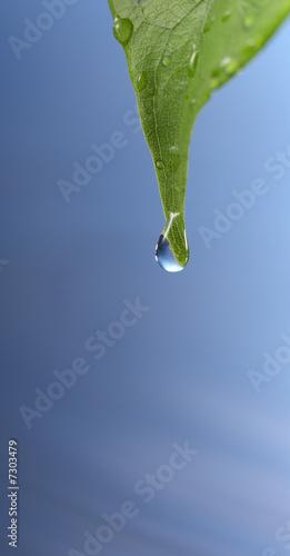 Doppelrollo mit Motiv - water drop (von Okea)