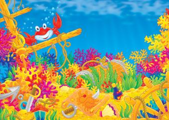 Fototapeta na wymiar Coral reef