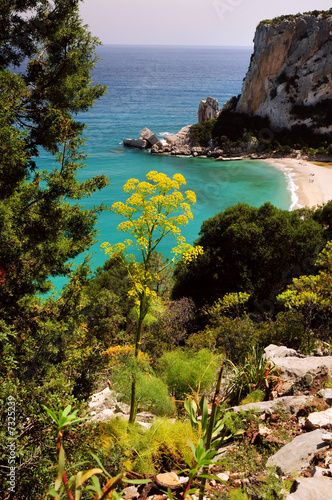 Photo  Cala Gonone beach. Sardinia