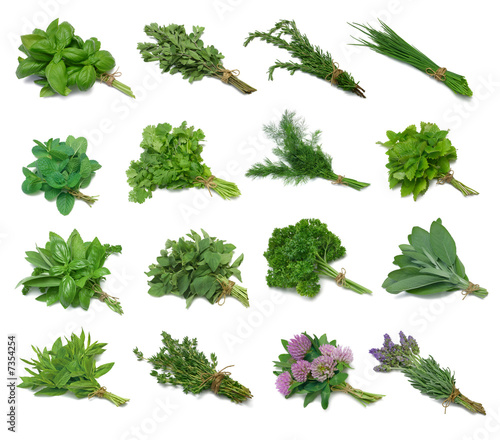 Fotografie, Obraz  Herb Series Sampler with clipping paths