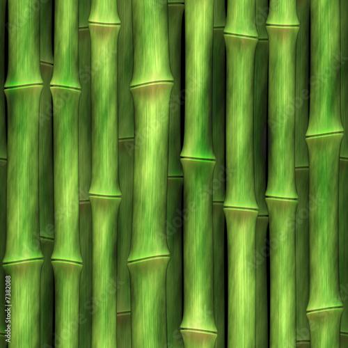 pedy-bambusa