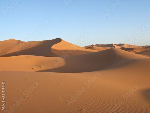Poster Afrique Sand Dunes of Sahara