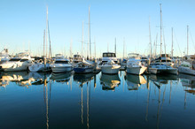 Marina Boats At Daybreak