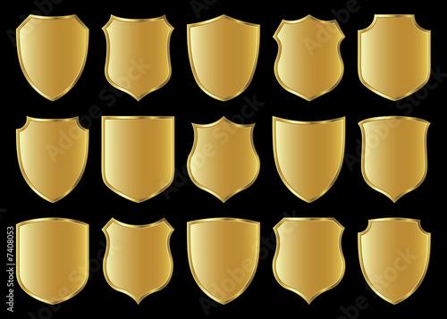 Obraz na plátně shield design set