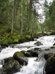 Fluss in Tirol