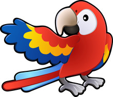 Cute Friendly Macaw Parrot Ill...