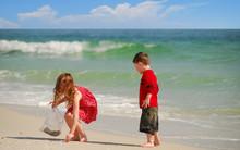 Children Collecting Seashells