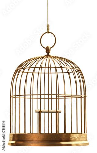 Fényképezés  Bird Cage