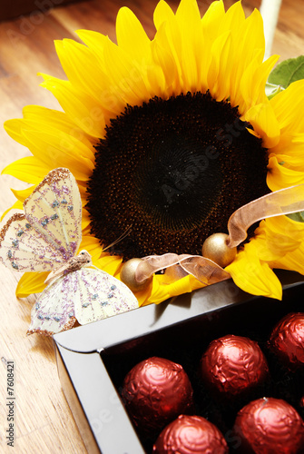 Fotografie, Obraz  Sunflower, butterfly and chocolate balls