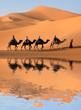Leinwandbild Motiv Camel Caravan in the Sahara Desert