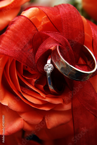Fotografie, Obraz  Wedding rings on a red rose