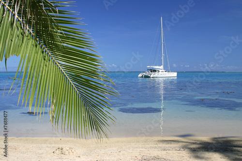 Anchored yacht