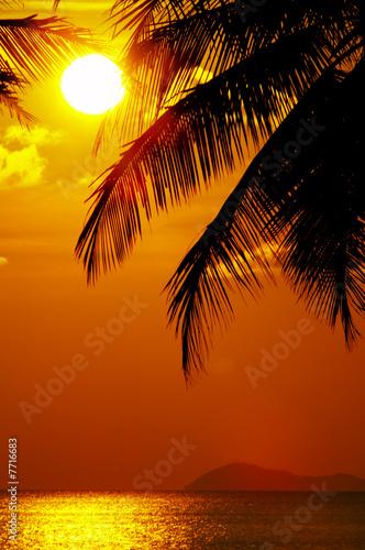 Foto-Kissen - sunset